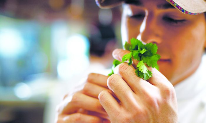 Oftentimes when people strongly like or dislike cilantro, it is the smell they are reacting to. (Fuse/thinkstockphotos.com)