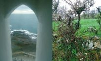 Irish Ghosts and Gaelic Greenery