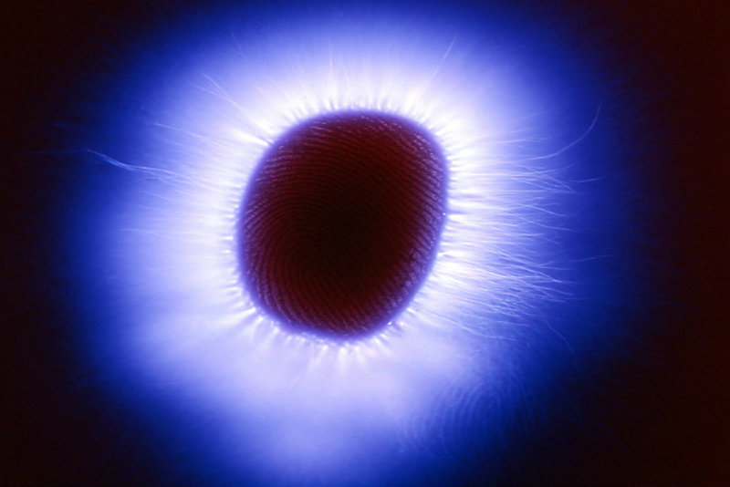 Photographing 'auras' teaches physicist about a human energy field affected by love, illness, and more