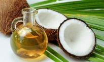 Coconut Oil Pulling Superior to Chemicals for Oral Health