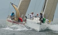 Good Support for Typhoon Series Yacht Races