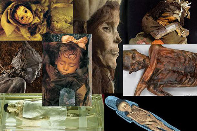 Art, Meds, and Fuel—The Surprising Historical Uses of Ancient Mummies