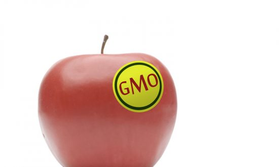 Readers Weigh In on GMO: 'Eating Mad Scientist Projects,' and the Right to Know
