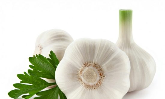 Top 8 Foods and Herbs for Healing Cancer