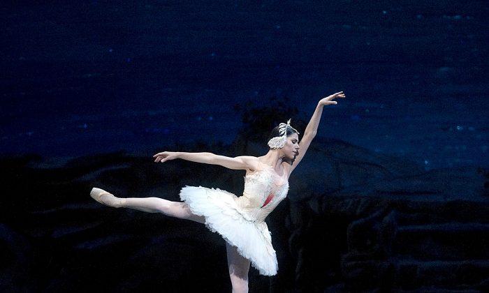 Paloma Herrera in Swan Lake at the Metropolitan Opera House. (Gene Schiavone)