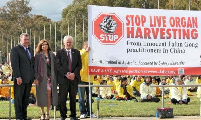 (L-R) Australian MP, Mr Craig Kelly, Professor Maria Fiatarone Singh from Sydney University, and Senator John Madigan join 400 Falun Gong Practitioners at the July 20 Commemoration Rally in front of Australian Parliament House on July 16, 2014.  (Minghui.org)