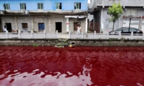 River Runs Red in Russia