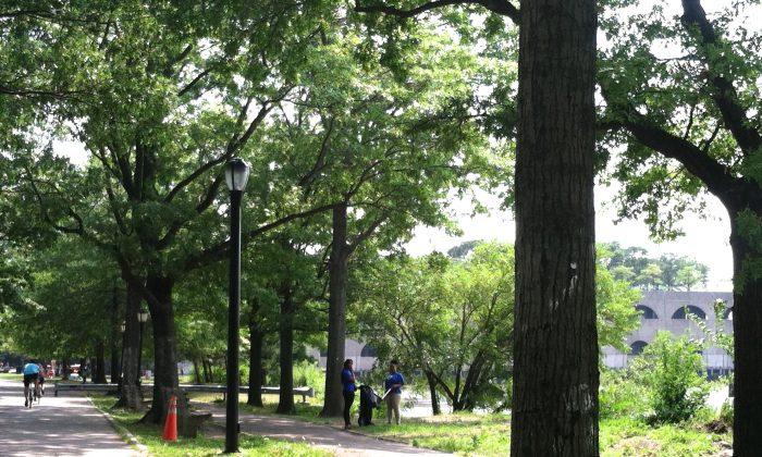 Park staff pick up litter at Riverside Park in Manhattan on Sunday. (Annie Wu/Epoch Times)