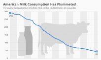 American Milk Consumption Has Plummeted (Infographic)