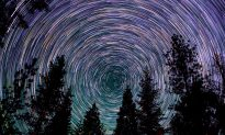 This Mesmerizing Time-Lapse Video Will Carry You Above Giant Sequoias to Whirl With the Stars