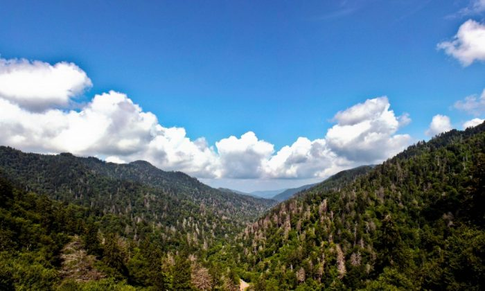 Top Things to Do in the Smoky Mountains