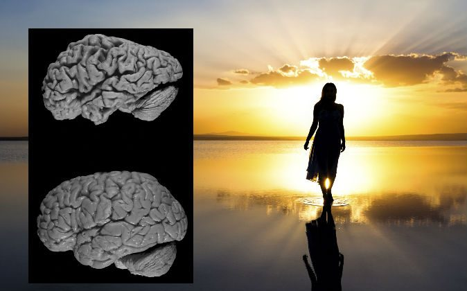 A brain affected by Alzheimer's disease (above) and a healthy brain (below). Does the mind or soul exist without the brain? (Hersenbank/Wikimedia Commons; image of a woman walking on the beach by  BERKO85/iStock/Thinkstock)