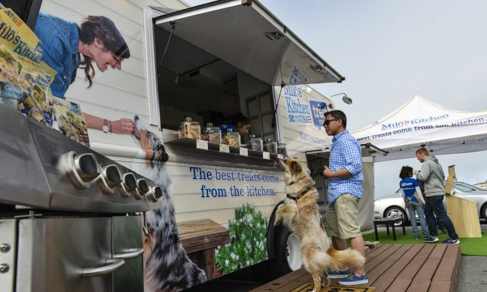 A dog treat truck is rolling into town. (Eli Zaturanski)