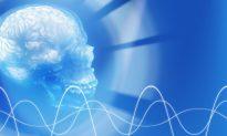Harvard's Long-Distance Telepathy Experiment Succeeds in Sending Simple Message