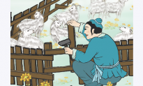 Chinese Idioms: Mend The Pen After A Sheep Is Lost (亡羊補牢)