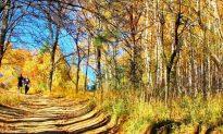 Spiritual Spots in Bulgaria