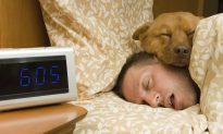 Brain 'Node' Causes Deep Sleep Without Sedative