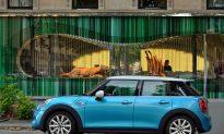 Video: MINI's First 5-Door Model Unveiled