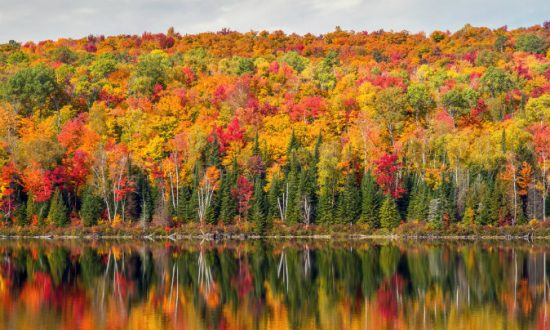 Fall Colors in Quebec: View the Changing Leaves (Video)