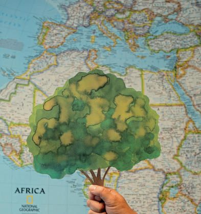 """The """"Thank you tree"""", designed by Swedish artist Lasse Åberg, represents a number of trees planted in Africa, and is meant to replace cut flowers as a gift to performers. (Courtesy of Vi Agroforestry)"""
