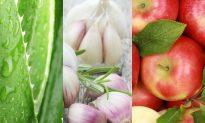 Healing Benefits of Aloe Vera