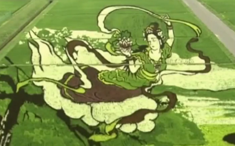 A Japanese Town Creates Works of Art in Rice Fields (Video)