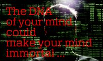 What Is the DNA of Your Mind?