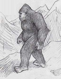 Drawing of Yeti (Wikimedia Common)