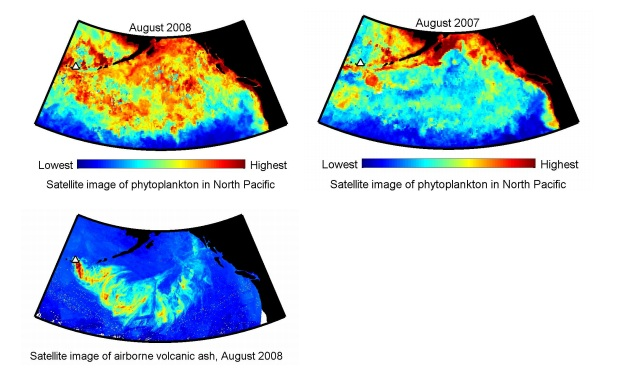 Satellite images of the region showing phytoplankton distribution after and before the eruption relative to the ash cloud distribution. (University of Victoria)