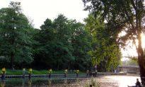 5 Berlin Bike Trails for Every Interest