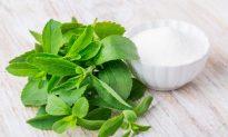 Stevia vs. Splenda – Choosing the Right Sweetener