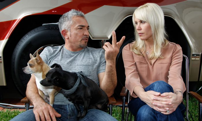 Owner DeLana Harvick (R) and Cesar Millan (L), dog behavior specialist, talk in the Driver/Owner Lot at Daytona International Speedway on February 17, 2012 in Daytona Beach, Florida. (Photo by Tom Pennington/Getty Images for NASCAR)