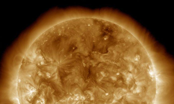 The sun. (NASA/SDO)