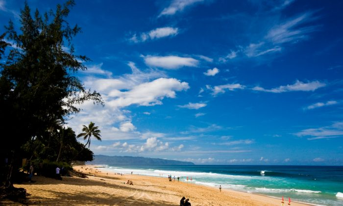The North Shore provides the perfect oasis—beautiful beaches without all the clutter and crowds. (Courtesy of Turtle Bay Resort)
