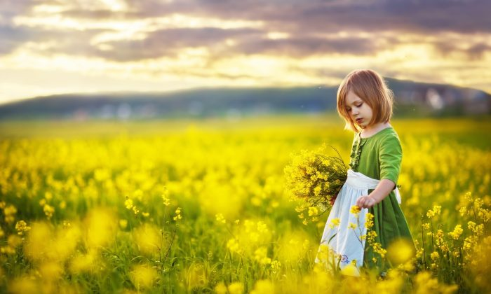 A little girl in a field of mustard. The mustard flower is used to alleviate sadness that comes without cause. Shutterstock/Photohota
