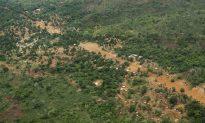 American Kidnapped on Ugandan Safari, $500,000 Ransom Demanded