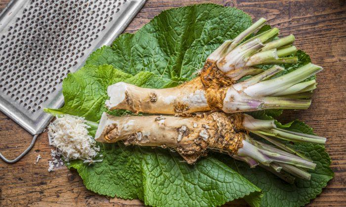 The heat of horseradish thins stagnant mucous, making it easier to clear.(Shutterstock/Kuttelvaserova Stuchelova)