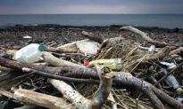 The Oceans' Plastic Problem Gets 8M Tons Worse Every Year (Video)