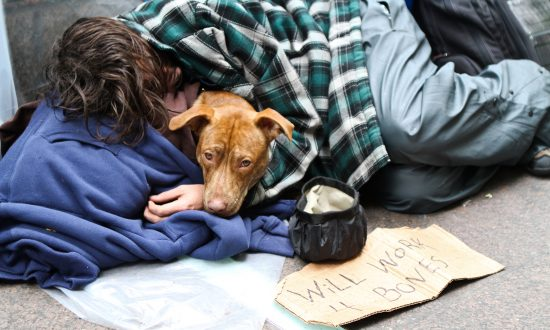 Image result for homeless with dog