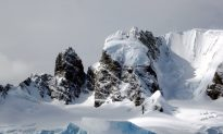 Shrinking of Antarctic Ice Shelves Is Accelerating