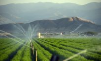 California's Water Problems Aren't Just About Drought