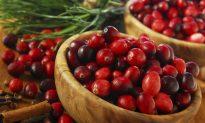 Cranberry Pills for UTI Work Like Antibiotics