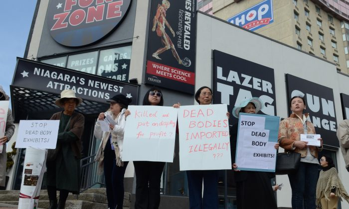 Protesters line Fallsview Blvd. in Niagara Fall, Ontario on April 17, 2015, to protest Premier Exhibitions' Bodies Revealed show, which displays around 100 plasticized corpses skinned to display muscles and organs. (Matthew Little/Epoch Times)