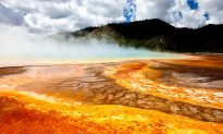 Yellowstone Earthquakes Reveal a Volcanic System Six Times Bigger Than We Thought