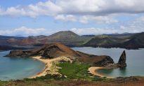 Exploring the Top Reasons to Visit the Galapagos Islands
