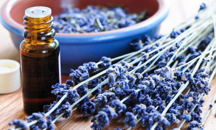 Lavender oil can relieve pain through scent alone. (Elenathewise/iStock)
