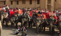 The Consummate Traveler – A Weekend in Jaipur