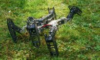This Six-Legged Robot Learns to Limp Like an Animal (Video)