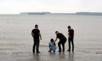 China Ship Righted to Speed Search in Yangtze Disaster