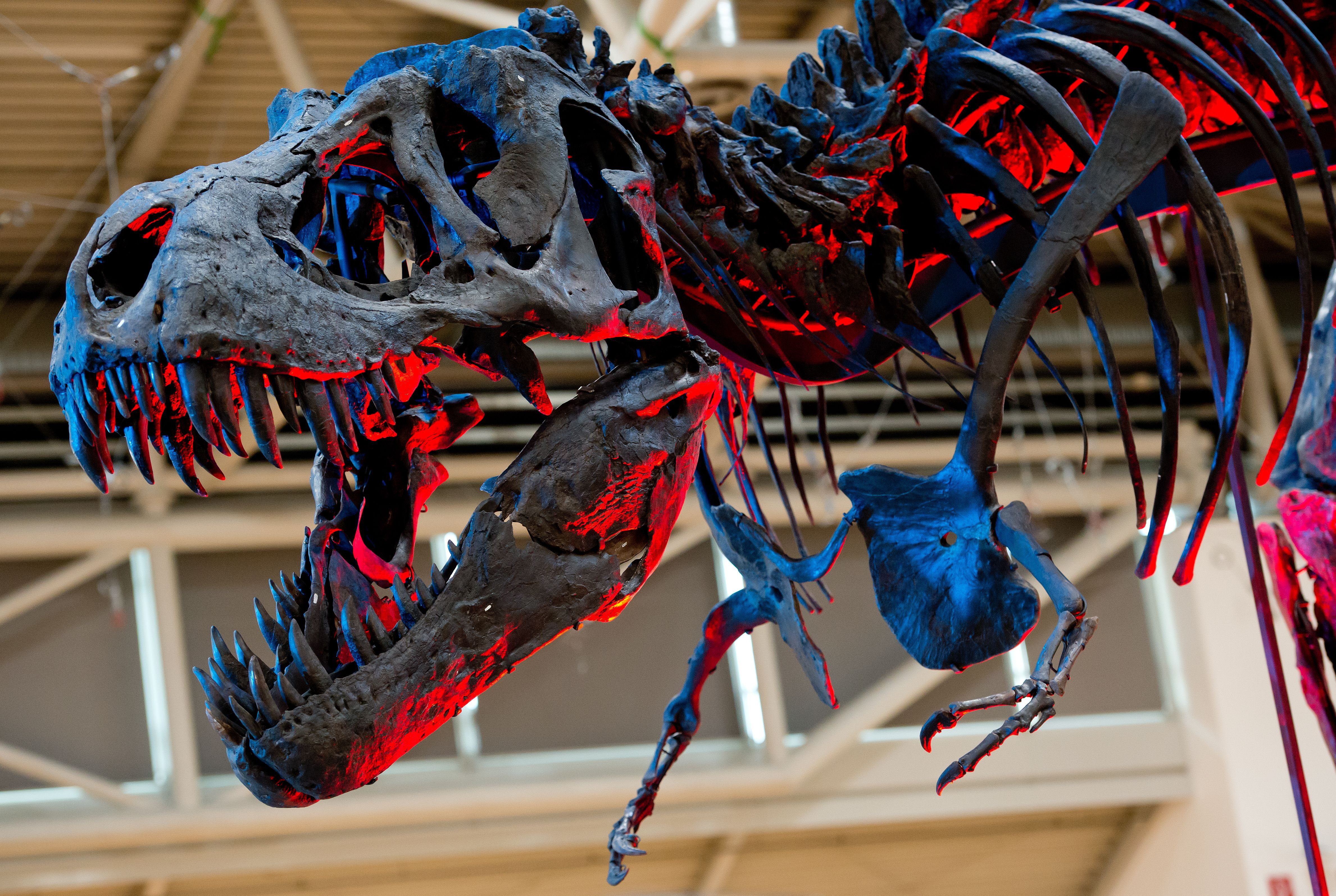 Thrill-Ride 'Jurassic World' Shows Why GMO Dinosaurs Are Bad for Your Health
